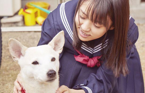 【写真を見る】映画『さくら』から欅坂46・小林由依の姿を捉えた場面写真が解禁
