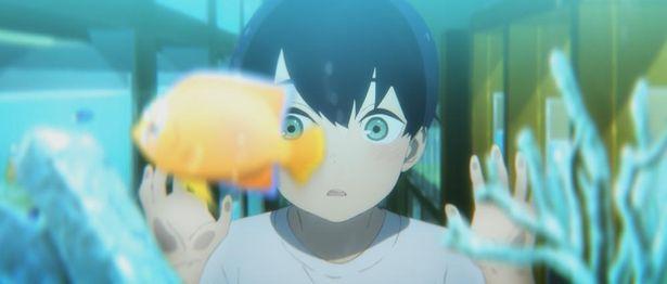 夢中になって魚を見つめる幼い恒夫