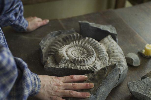 世間から離れて暮らすメアリーは土産物用のアンモナイトを発掘して生計を立てていた