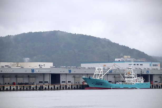 雨模様の石巻市の漁港には、ひっきりなしに漁船が往来していた