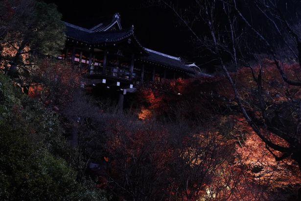 クライマックスシーンは紅葉の名所として知られる東福寺!