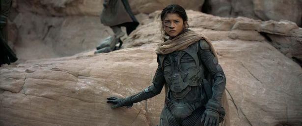 ゼンデイヤが演じるのは、砂の惑星「デューン」の自由民フレメンの戦士、チャニ