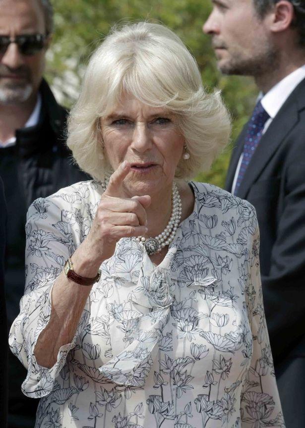 イギリス 評判 カミラ 夫人