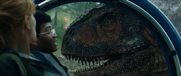 こちらも新顔のカルノタウルス。T-レックス級のド迫力で圧倒されること間違いなし