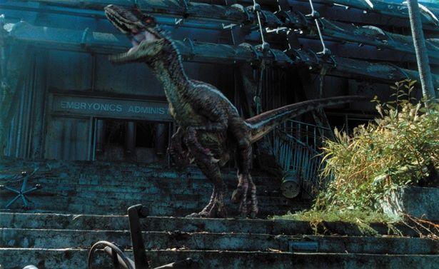 シリーズで唯一、頭部にトサカのようなものが確認できるラプトル(『ジュラシック・パークIII』)