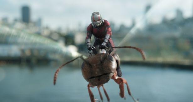 『アベンジャーズ/エンドゲーム』では物語のカギを握りそうなアントマン(『アントマン&ワスプ』)