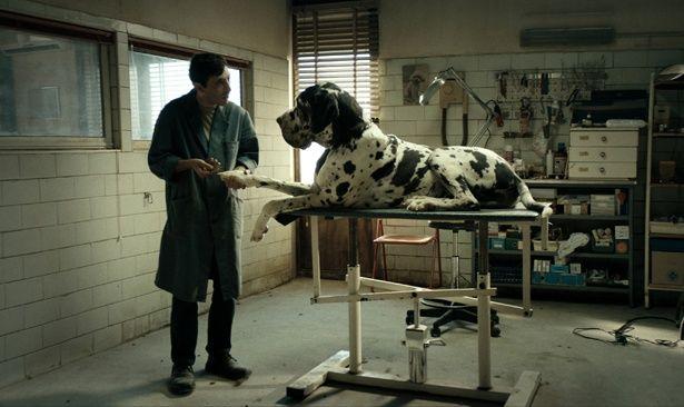 悪友にはご用心!?善人・マルチェロの目がヤバくなっていく様子に引き込まれる『ドッグマン』