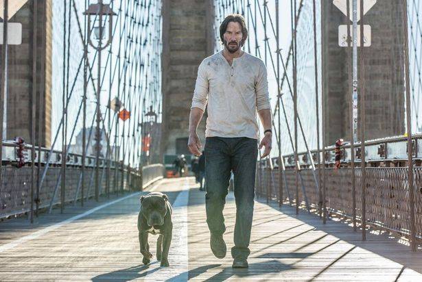 犬は死なないので愛犬家も安心の『ジョン・ウィック:チャプター2』