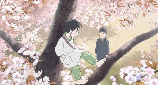 【写真を見る】桜や雪景色など、美しい風景もすずの物語を鮮やかに彩る