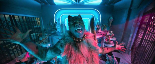 甘い歌声で雌ネコからモテまくるラム・タム・タガー