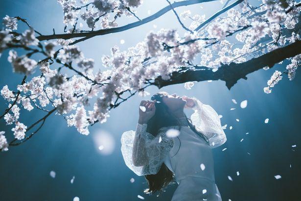 【写真を見る】奈須きのこから「HFは昏い物語」と説明を受けたAimer。「Fate」への想いを明かす