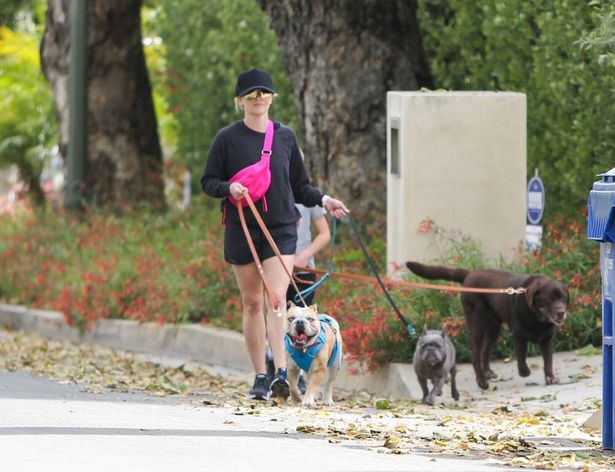 リースの3匹の愛犬たち、ラブラドール・レトリバーのハンク(右)、フレンチ・ブルドッグのペッパー(中央)、アメリカン・ブルドッグのルー(左)