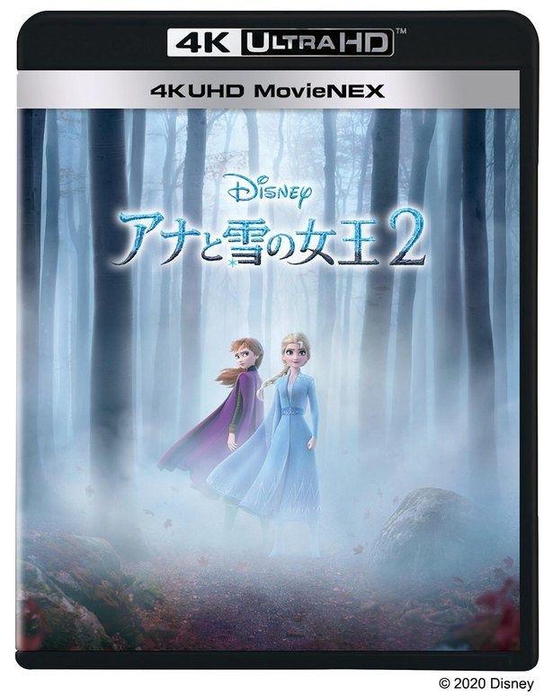 4K ULTRA HD MovieNEXならさらに高画質で映画が楽しめる!