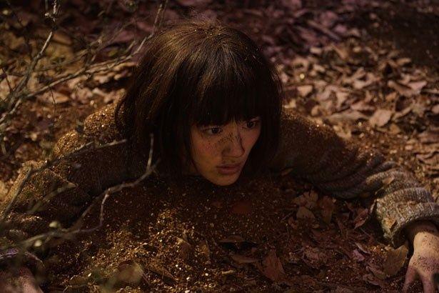 森の中で一体何が…?