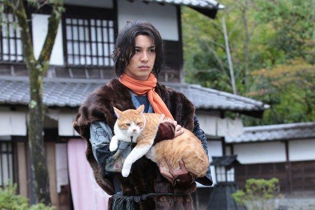 『猫侍』シリーズのスタッフが集結した『猫忍』