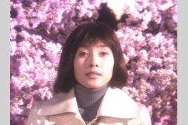 嫌われ松子の一生の画像
