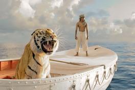 ライフ・オブ・パイ トラと漂流した227日の画像