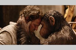 猿の惑星 新世紀(ライジング)の画像