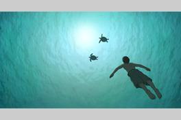 レッドタートル ある島の物語の画像