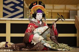 シネマ歌舞伎 阿古屋の画像