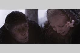 猿の惑星:聖戦記(グレート・ウォー)のメイン画像