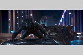 ブラックパンサーのメイン画像