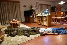 家に帰ると妻が必ず死んだふりをしています。のメイン画像