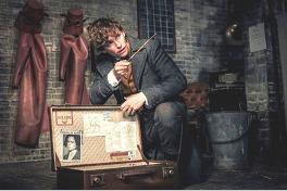ファンタスティック・ビーストと黒い魔法使いの誕生のメイン画像
