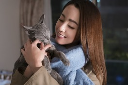 猫は抱くもののメイン画像