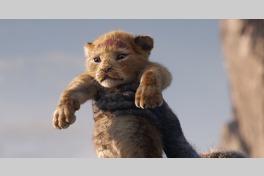 ライオン・キングのメイン画像