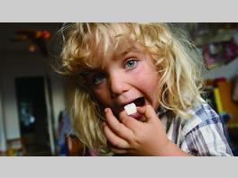 映画作品:シュガー・ブルース 家族で砂糖をやめたわけ